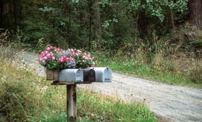 Mailbox with flowers at San Juan Island Island in Washington